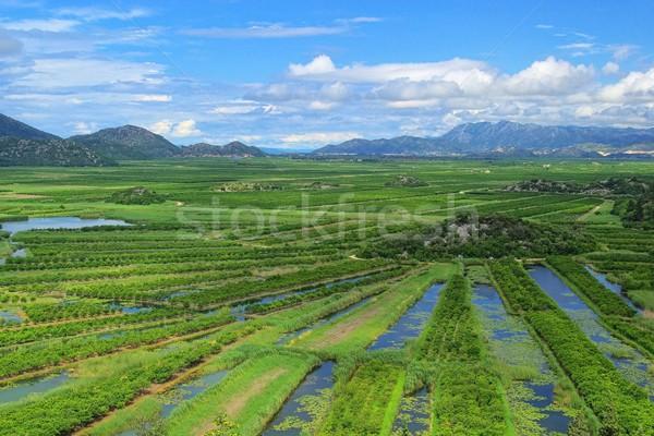 Delta víz hegy folyó felhő pénz Stock fotó © LianeM