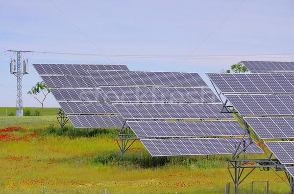 solar plant on field 09 Stock photo © LianeM