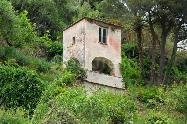 Liguria house  Stock photo © LianeM