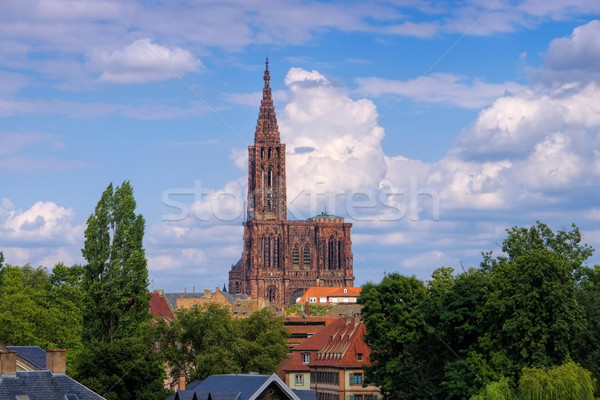 Strasbourg cathedral in  Alsace Stock photo © LianeM