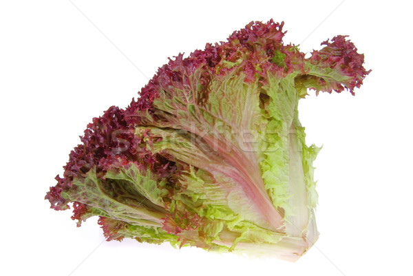 15 groene bladeren salade vers gezonde Stockfoto © LianeM