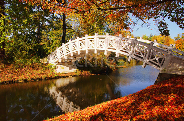 English bianco ponte 26 acqua foglia Foto d'archivio © LianeM