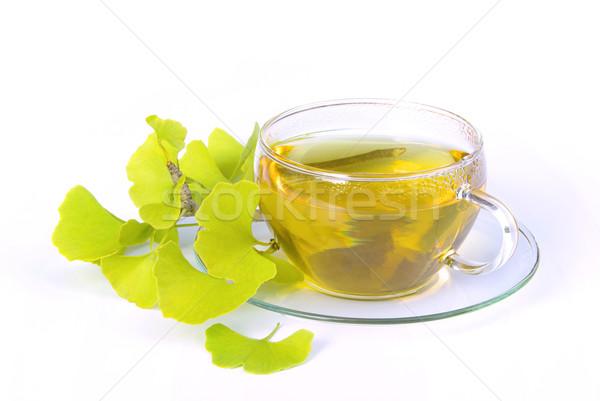 tea ginkgo 06 Stock photo © LianeM