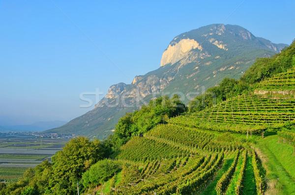 Trentino 04 Stock photo © LianeM
