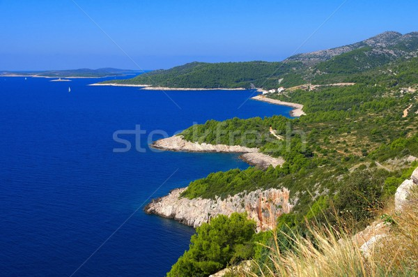 Hvar coast  Stock photo © LianeM