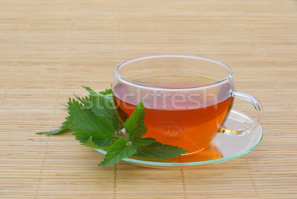 tea nettle 06 Stock photo © LianeM
