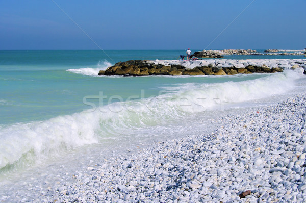 Pisa beach 01 Stock photo © LianeM