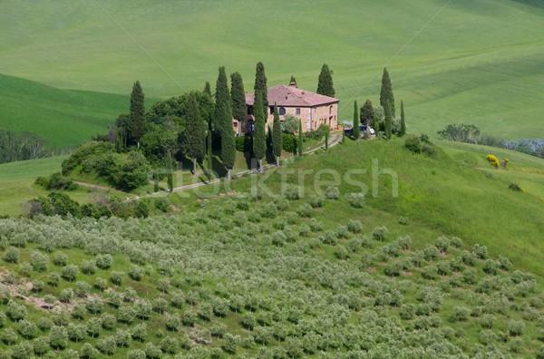 Toscane maison arbre printemps paysage été Photo stock © LianeM