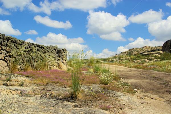 バレンシア 花崗岩 岩 風景 草 山 ストックフォト © LianeM