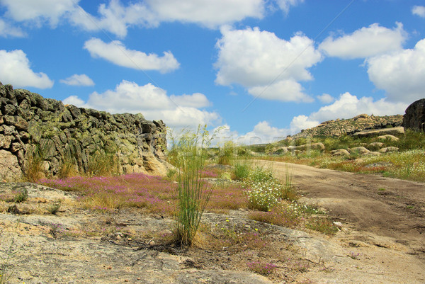 Valencia de Alcantara granite rock landscape 42 Stock photo © LianeM