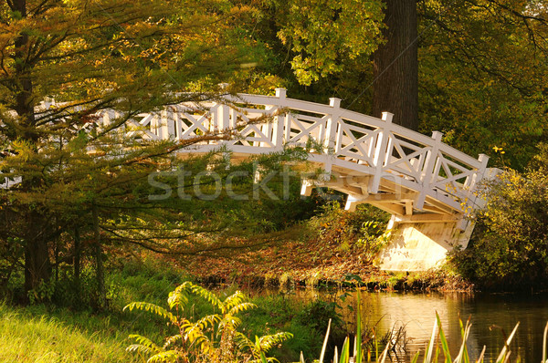 английский белый моста 24 лист саду Сток-фото © LianeM