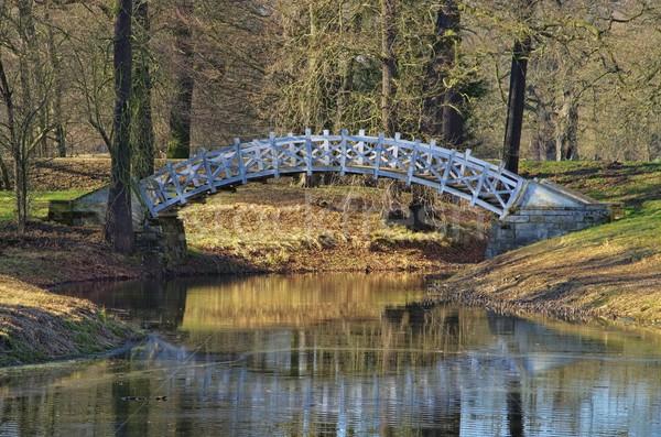 Dessau Luisium bridge  Stock photo © LianeM