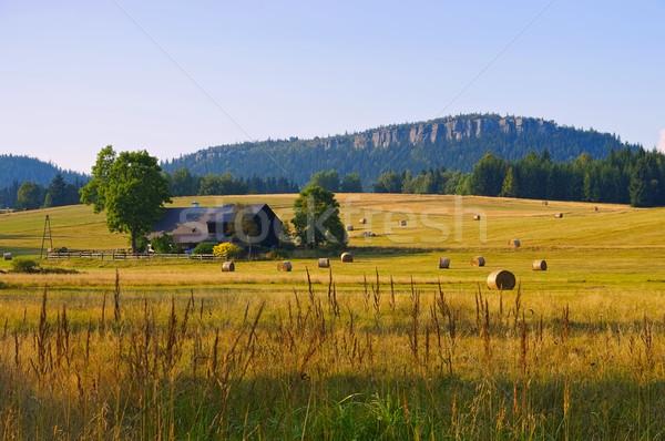 Stock photo: Stolowe Mountains in Silesia