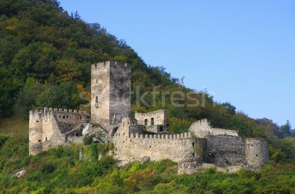 Castillo ruina árbol pared Europa torre Foto stock © LianeM