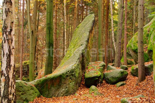 Zandsteen rock bos 12 landschap steen Stockfoto © LianeM