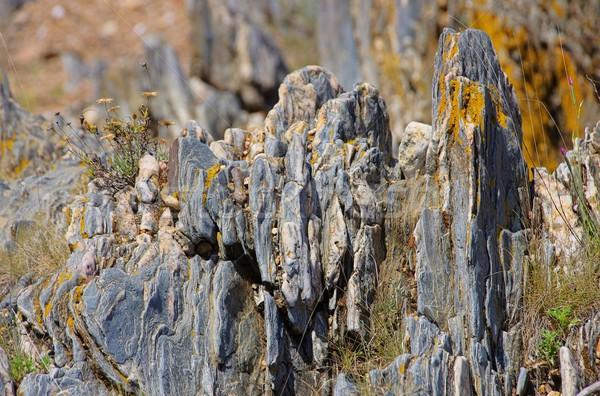iron ore 02 Stock photo © LianeM