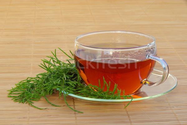 tea field horsetail 03 Stock photo © LianeM