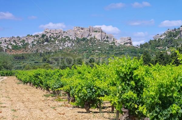 Les Baux-de-Provence 01 Stock photo © LianeM