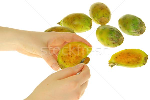prickly pear 23 Stock photo © LianeM