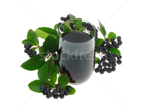 Aronia Saft - aronia juice 01 Stock photo © LianeM