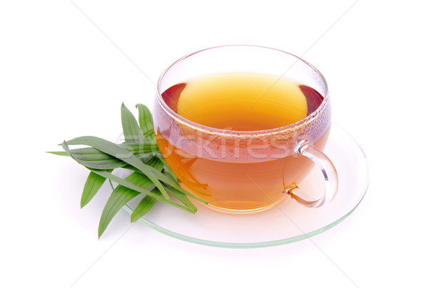 tea ribwort plantain 01 Stock photo © LianeM