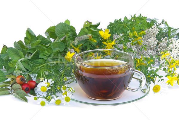 tea herbal 01 Stock photo © LianeM