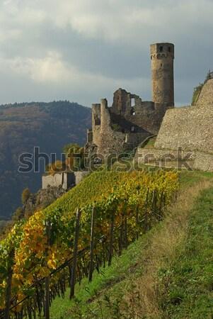 13 montana verde castillo río otono Foto stock © LianeM