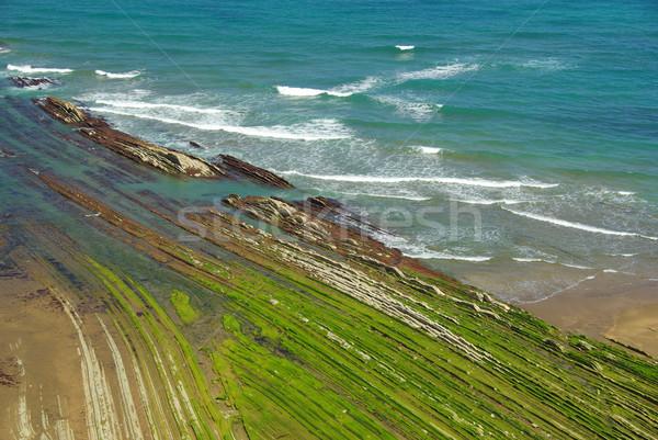 Costa Vasca near Zumaia 13 Stock photo © LianeM