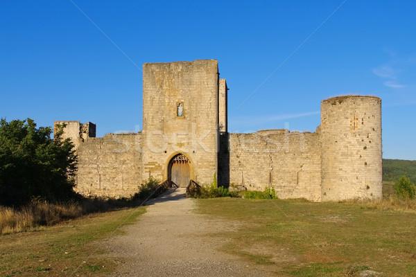 castle Puivert in France Stock photo © LianeM