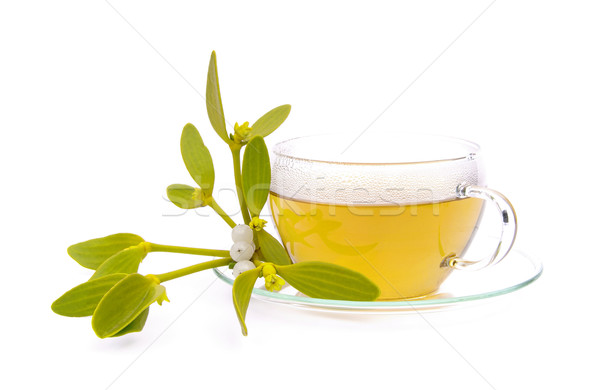 tea mistletoe 01 Stock photo © LianeM