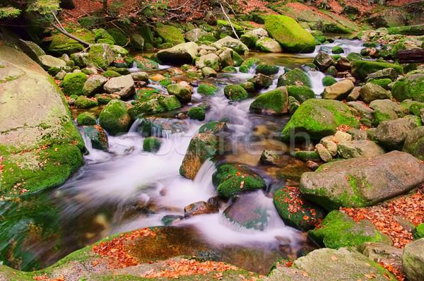 waterfall 01 Stock photo © LianeM