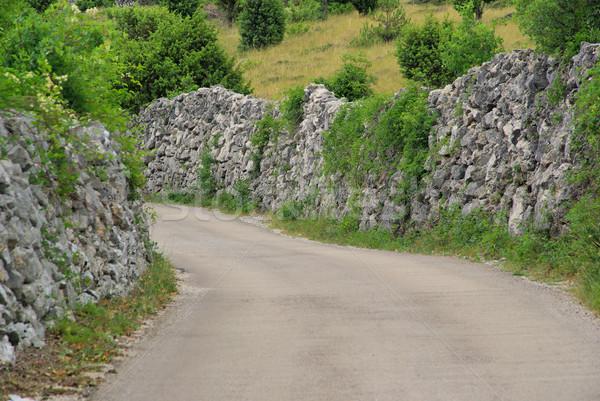 Wyschnięcia mur sposób rock kamień Zdjęcia stock © LianeM