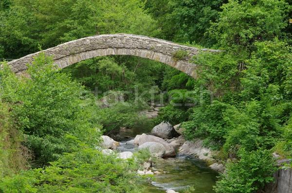 Nasino Bridge  Stock photo © LianeM