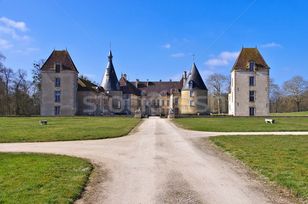 Chateau Commarin in France Stock photo © LianeM