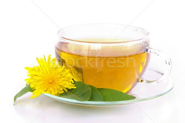 Chá dandelion flores médico fundo verde Foto stock © LianeM