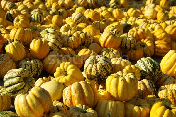 Díszítő 13 buli háttér ünnep ősz Stock fotó © LianeM