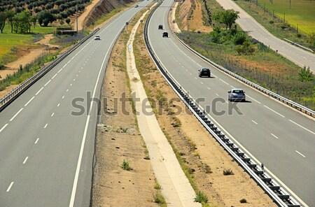 freeway 09 Stock photo © LianeM