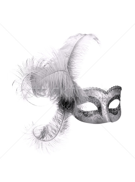 mask isolated 02 Stock photo © LianeM