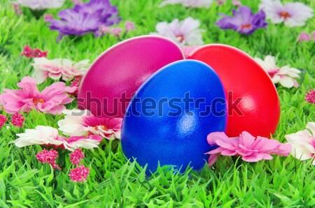 Foto stock: Huevos · de · Pascua · flor · pradera · 17 · hierba · huevo
