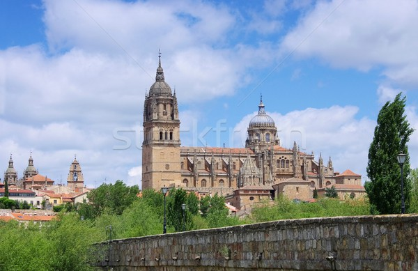 Salamanca cathedral 02 Stock photo © LianeM