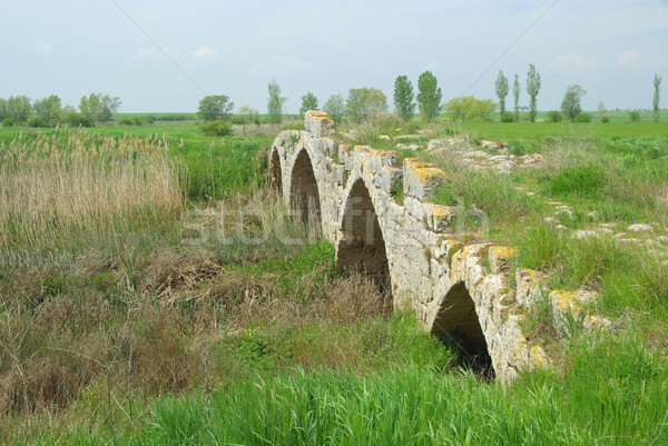 Foto stock: Romano · ponte · edifício · natureza · campo · urbano