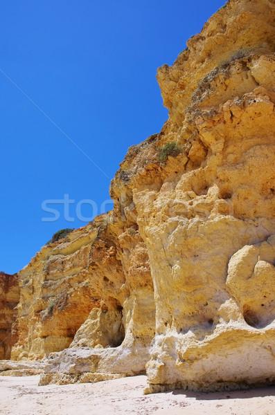 Algarve beach in Portugal Stock photo © LianeM