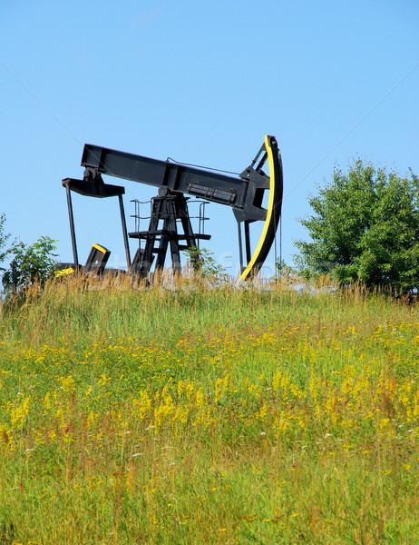 oil pump 05 Stock photo © LianeM