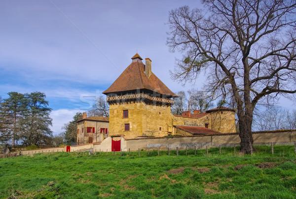 Saint-Pierre-la-Noaille Chateau Stock photo © LianeM