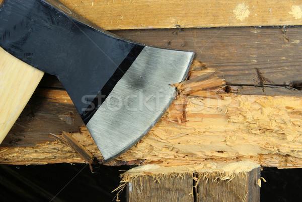 woodworm 08 Stock photo © LianeM
