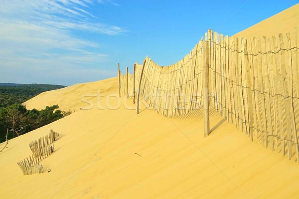 砂丘 ビーチ 水 木材 風景 光 ストックフォト © LianeM