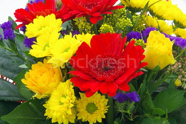 Virágcsokor virágok 19 rózsa levél háttér Stock fotó © LianeM