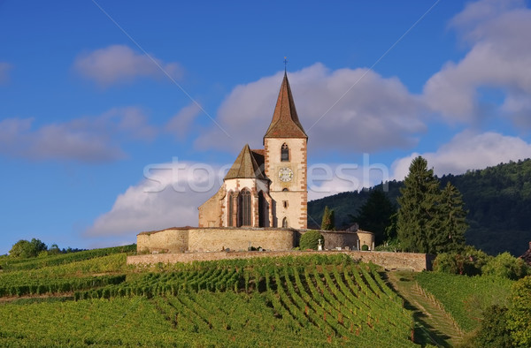 Fortified church Hunawihr in Alsace Stock photo © LianeM