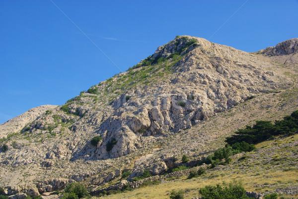 Secar muro de piedra 12 campo verde azul Foto stock © LianeM