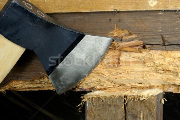 woodworm 06 Stock photo © LianeM